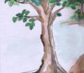 こんもりとした土のそばから多羅の木が二本生えてきて、みるみる内に大きく太く茂った。